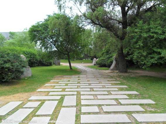 当前大学校园景观设计研究图片