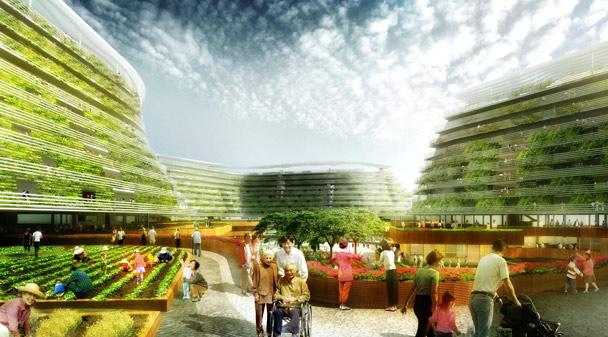 老龄宜居环境建设问题及发展建议