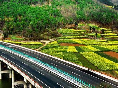 农业产业结构规划