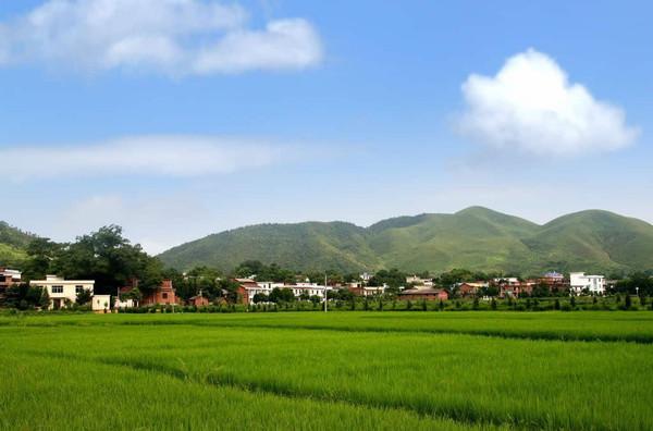 银火专业设计文化休闲农业发展规划